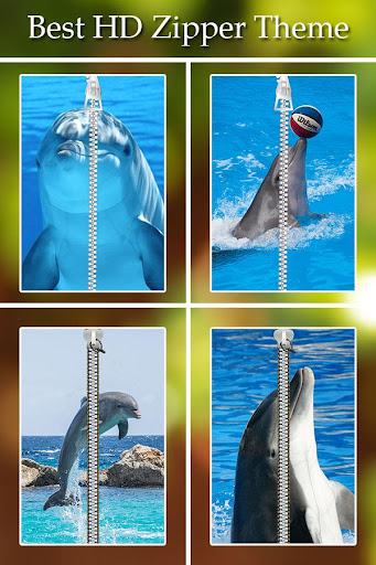 Dolphin Zipper Lock