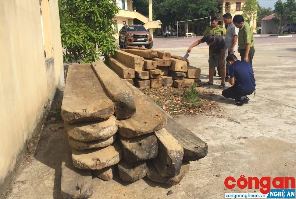 Số gỗ bị lực lượng chức năng đưa về để điều tra.