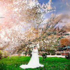Wedding photographer Eldar Talibov (eldartalibov). Photo of 12.11.2017