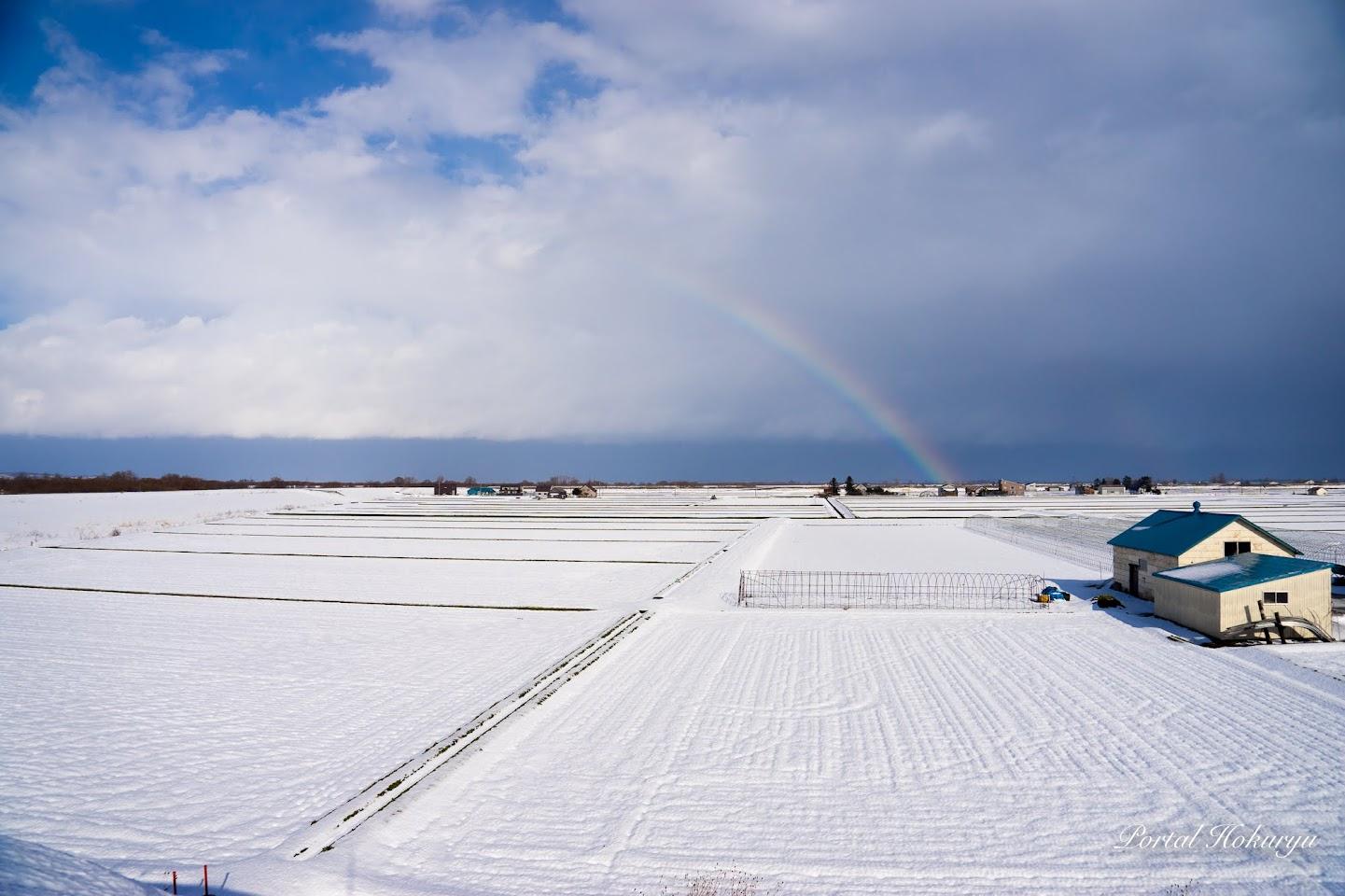 雪景色の中の虹
