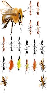 Aplasta insectos sin Anuncios - náhled
