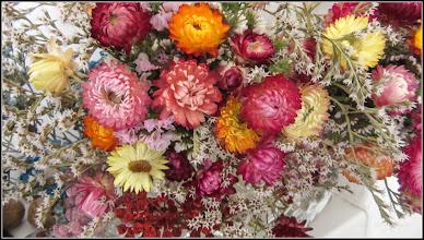 Photo: Flori de pai, Imortele (Heichrysu) - Turda, din Piata Centrala Agroalimentara - 2018.11.08