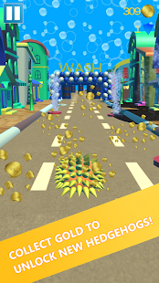 Hedgehog Pet Run - Endless Road Speed Runner Game- screenshot thumbnail