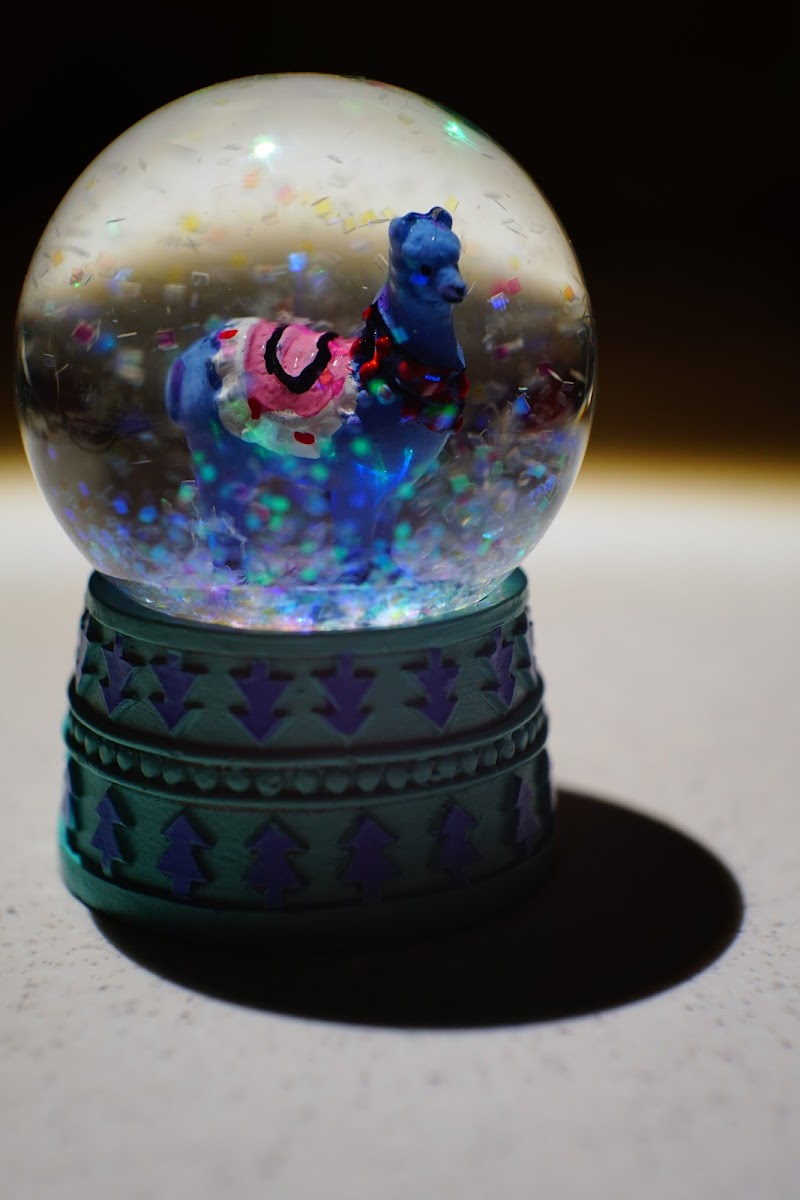 Put a Lama in a snow globe... di Gigetta2