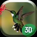 Colibri Hummingbird Live Wallp icon