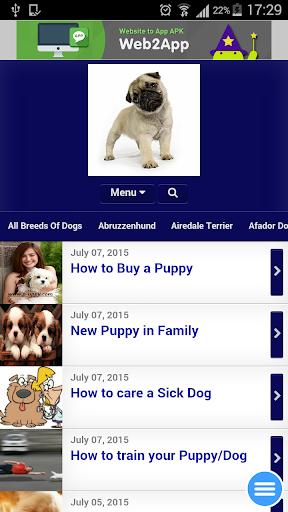 Dogz Puppies