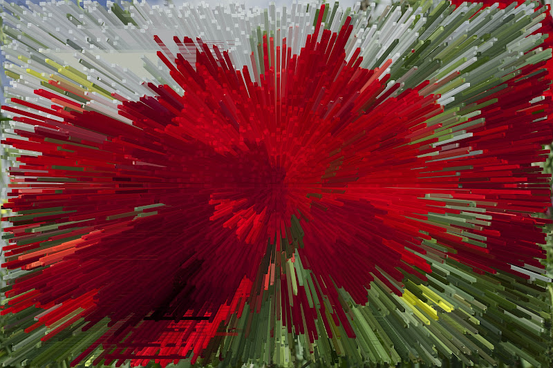 Esplosione di colori di Giuseppe.B