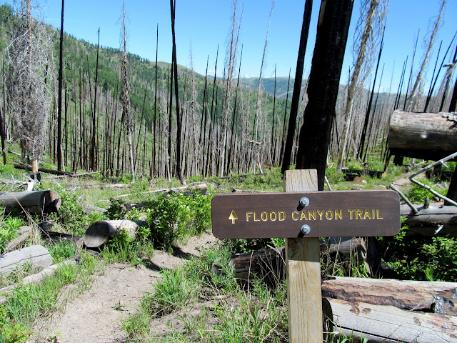 Top of the Flood Canyon Trail