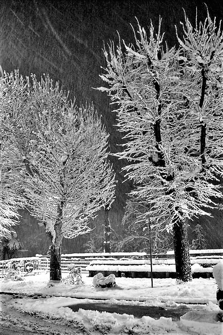 Nevicata Notturna in B/N di sandro_brillarelli_giovanna_feliziani