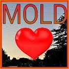 Mold in Flintshire icon