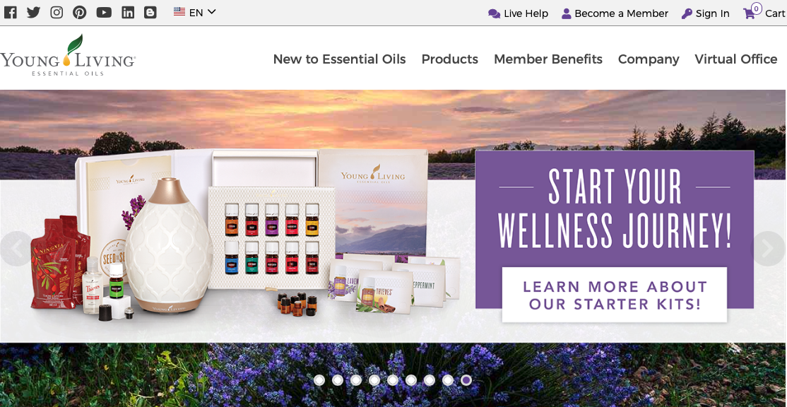 Best Essential Oils Affiliate Programs How to Make Money With Essential Oils Young Living Essential Oils
