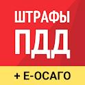 Рэй.Штрафы ПДД - ГИБДД, ОСАГО онлайн icon