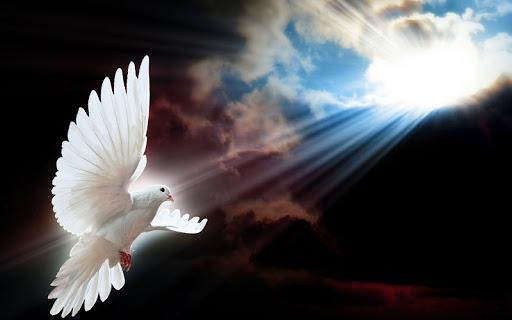 Mensajero de Paz