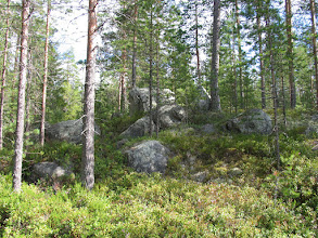 Photo: Каменные гряды