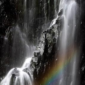 Rainbow over McKenzie Falls by Gill Fry - Landscapes Waterscapes ( water, waterscape, waterfall, rocks, rainbow,  )