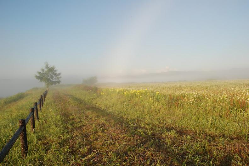 眺望の丘で白い虹に合う
