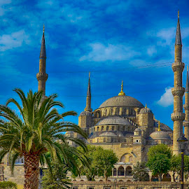 Blue Mosque by Pravine Chester - Buildings & Architecture Places of Worship ( building, blue mosque, public place, architecture, historical, travel )
