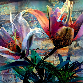 Lilies Elodie by Cassy 67 - Digital Art Things ( digital, modern art, love, harmony, flowers, abstract art, abstract, lilies, digital art, flower, light, lily, energy )