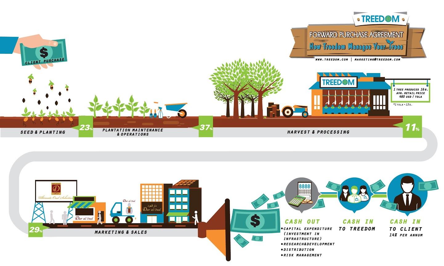 Infographic - Cách Treedom quản lý hệ thống