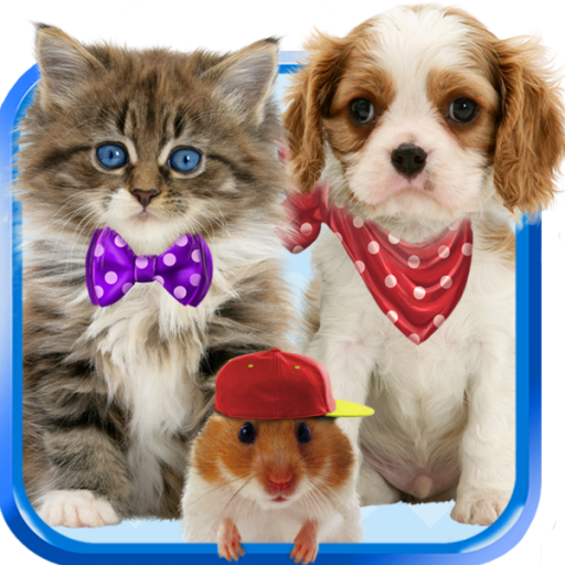 Talking cat  Talking puppy  - Apps on Google Play