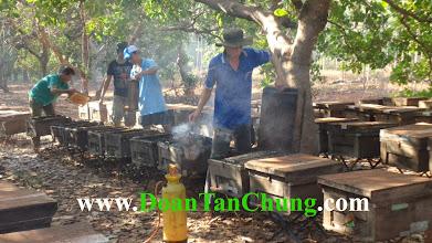 Photo: Nếu bạn có thắc mắc gì về sản phẩm mật ong phấn hoa sữa ong chúa hãy liên hệ với chúng tôi qua những trang web :  www.DoanTanChung.Com www.traiongmatphatxim.com www.matongnguyenchatgiare.com  Hoặc bạn có thể liên hệ trực tiếp SĐT 01218.96.26.86 (Mr Chung) Chúng tôi luôn sẵn sàng phục vụ bạn!