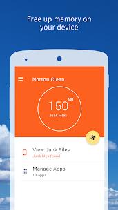Norton Clean, Junk Removal 2