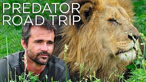 Predator Road Trip thumbnail
