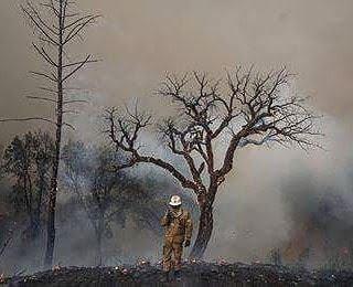 Lamego – Identificado por incêndio florestal