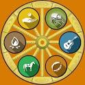 Gypsy Wheel of Fortune icon