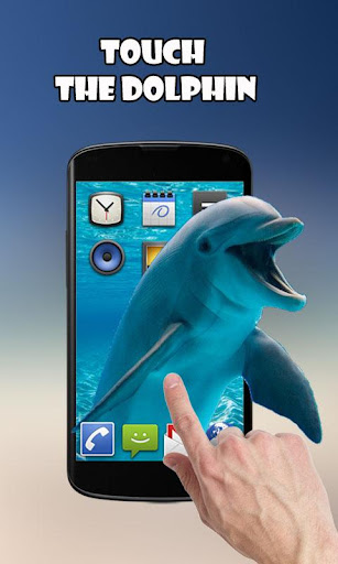 Download Dolphins - Play with me MOD APK 1