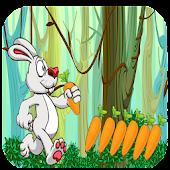 Jungle rabbit carrot subway™