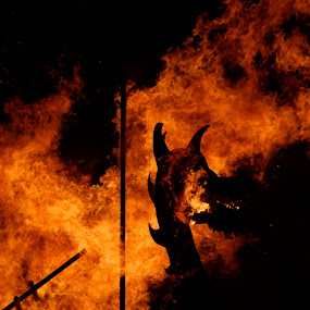Up Helly Aa by Maggie Adamson - News & Events World Events ( scotland, fire festival, lerwick, up helly aa, shetland,  )