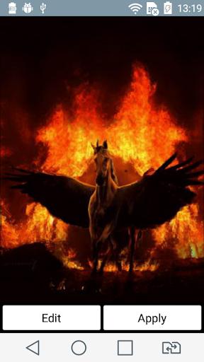 Pegasus at night live wallpape