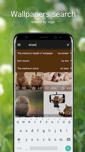 Cat Wallpapers & Cute Kittens ss2