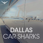Dallas Car Sharks