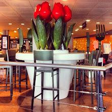 Photo: Tullip Restaurant in Amsterdam Airport - summer 2012 #intercer #tullip #amsterdam #netherlands #restaurant #food #flower #flowers #fork #table #chairs #eat #airport #summer #red #knife #bar #color #fast #instafood #travel #white #green #style #design #pretty #beautiful - via Instagram, http://instagr.am/p/Q6NppYJfrA/