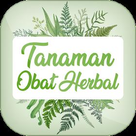 Tanaman Obat Herbal Offline
