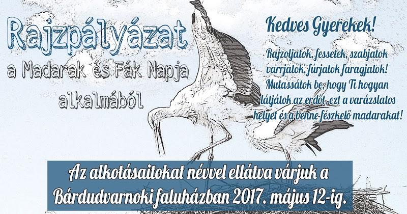 Rajzpályázat a Madarak és Fák Napja alkalmából 2017