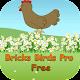 Chicken Birds Free 3D