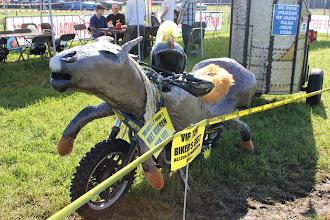 Photo: paard en wagen ...