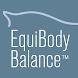Equibodybalance