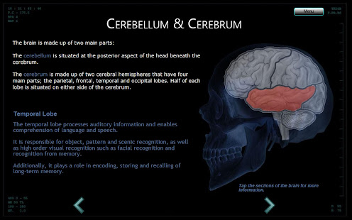 Interactive Brain Anatomy Mri Apps On Google Play