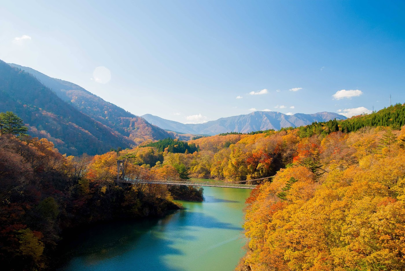 Lý do cho những chiếc lá mùa thu kỳ diệu ở Nhật Bản 3
