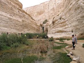 Photo: Désert du Negev : gorges d'Avdat, cité nabatéenne qui domine un vaste plateau entaillé par les eaux jadis abondantes d'une source (Moïse et l'eau qui jaillit du rocher)
