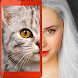 子猫:あなたはどんな猫ですか?冗談 - Androidアプリ