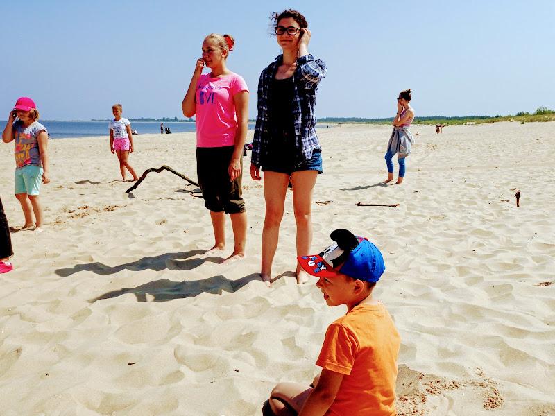 Scholka na plaży