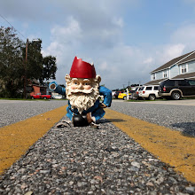 Photo: Lose a gnome? This fellow was wandering around in the middle of the road this morning. #LeadingLinesMonday +Pam Boling +Andreas Levi +David Murphy +Elle Rogers +Michael B. Stuart +Simos Xenakis