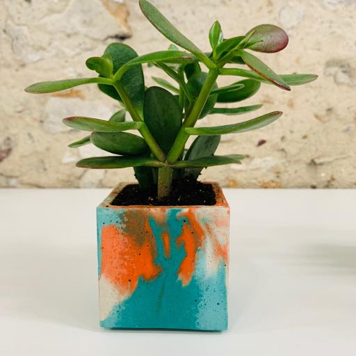pot en béton marbré coloré turquoise et orange avec succulente