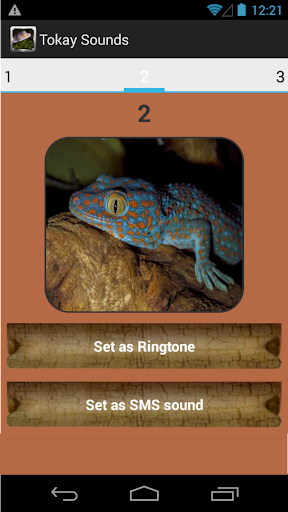 Tokay Gecko Sounds|玩音樂App免費|玩APPs