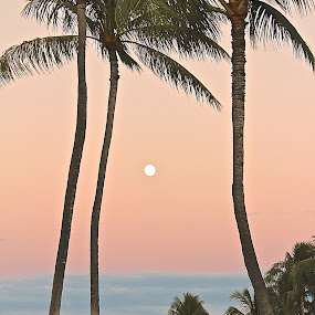 MOON OVER HAWAII  by Michael Guerrero - Landscapes Sunsets & Sunrises